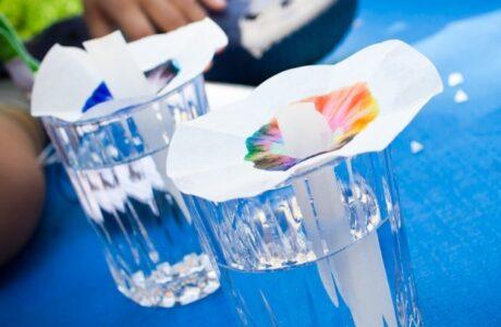 Experiment zur Auftrennung von Farbe mithilfe von Filterpapier