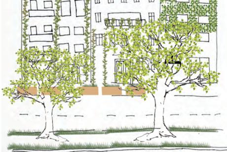 Zeichnung zwei Bäume vor Straße und Häusern