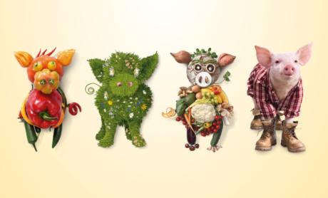 Collage von vier Schweinen: zwei aus Gemüse, eines aus Wiesenbildern, eines aus einem Ferkelbild und Kleidung