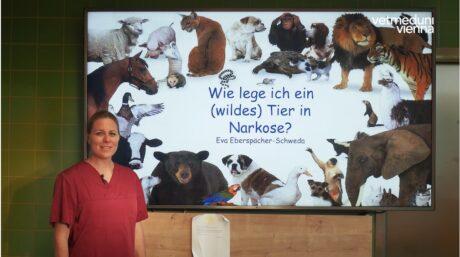 Eva Eberspächer-Schweda beginnt mit Ihrer Vorlesung