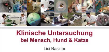 Klinische Untersuchung bei Mensch, Hund und Katze. Bildercollage.