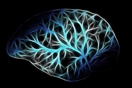 record of brainactivity