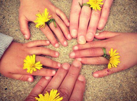 Hände mit Ringen aus Löwenzahnblüten