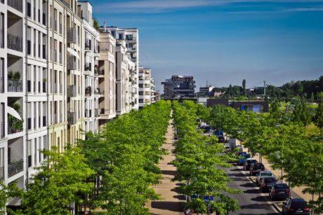 Viele Bäume in einer Stadt, links eine Hausfassade