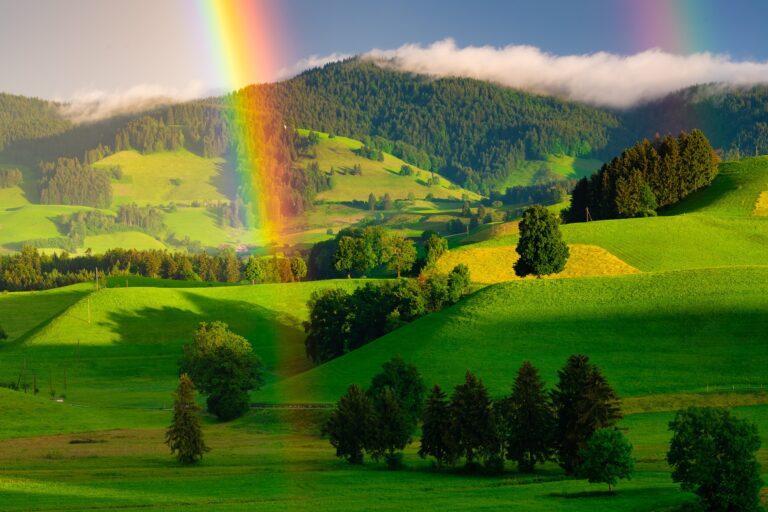 Ein schöner Regenobgen, der vor einer grünen Hügellandschaft mit einzelnen Bäumen, Wald und Wiesen zu sehen ist