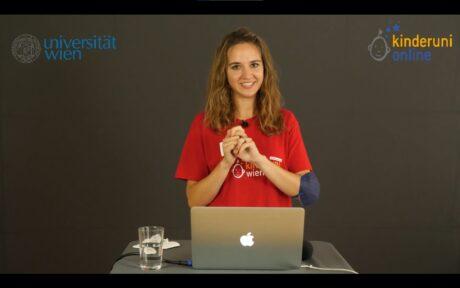 Screenshot Livestream